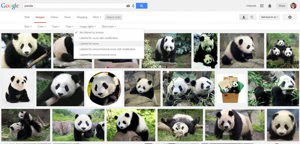 Google Images Panda