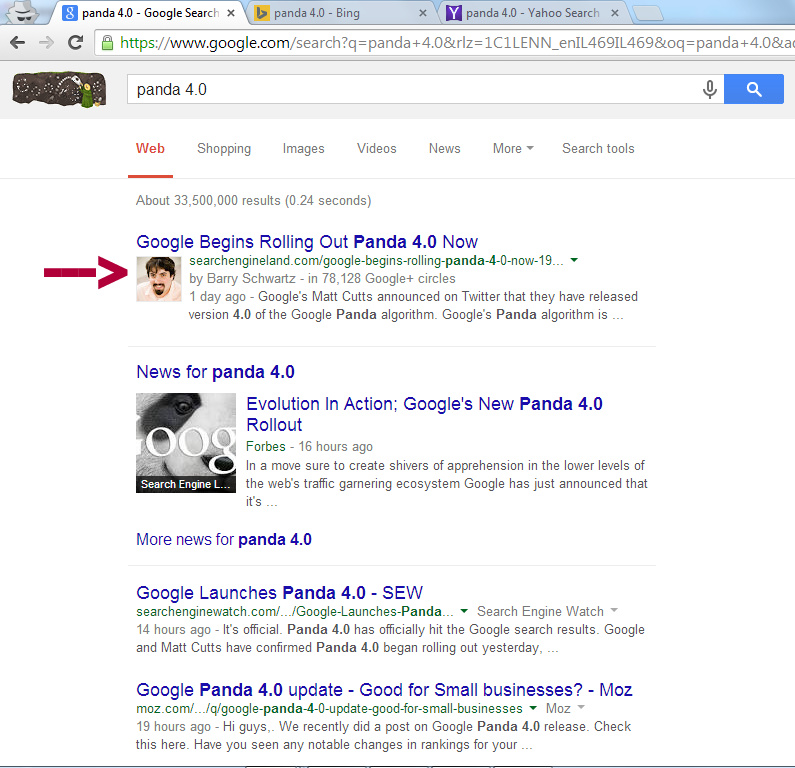Panda 4.0 SERP's for Google