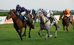 Marketing Strategy 2014: Are you betting on the right horse?