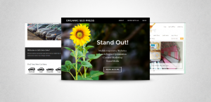 Web Design Screen Shots