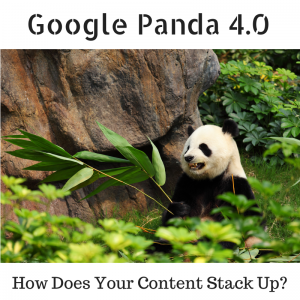 Google Panda 4.0 - How does Your Content Stack Up