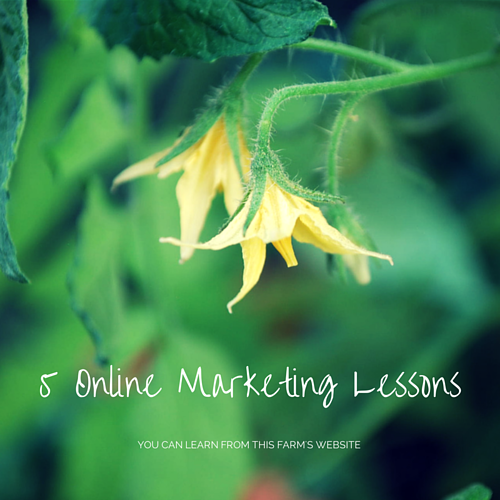 5 Online Marketing Lessons You Can Learn From This Farm's Website